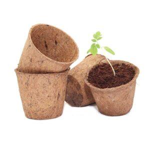 Coir pots 10cm 10 pack