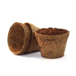Coir pots 8cm 10 pack