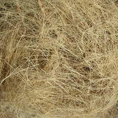 coir fibre